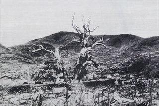 kusunoki_1945.jpg